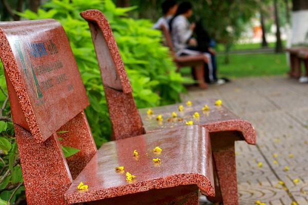 cho thuê ghế công viên