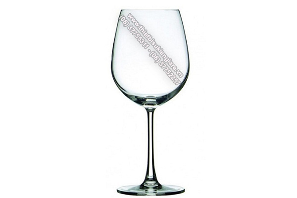 Cho thuê ly tách đẹp giá rẻ nhất hiện nay