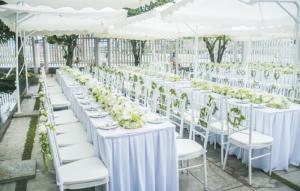 Bạn biết gì về thuê bàn ghế đám cưới ?